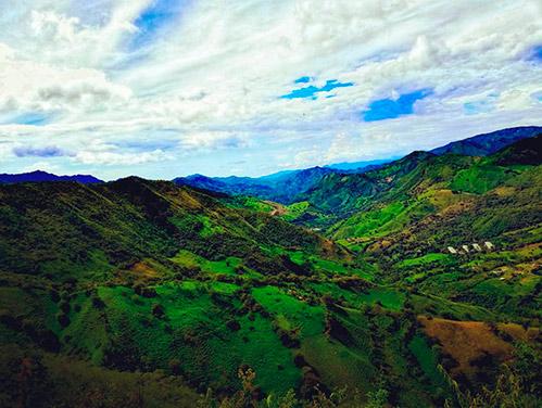 Todo Sobre La Region Andina En Un Solo Lugar